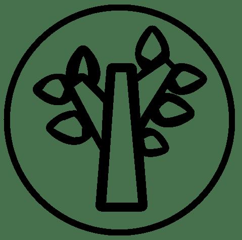 VS Nibelungen Umwelterziehung